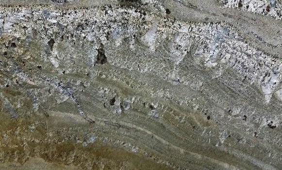 Araras Gold Polished 3CM